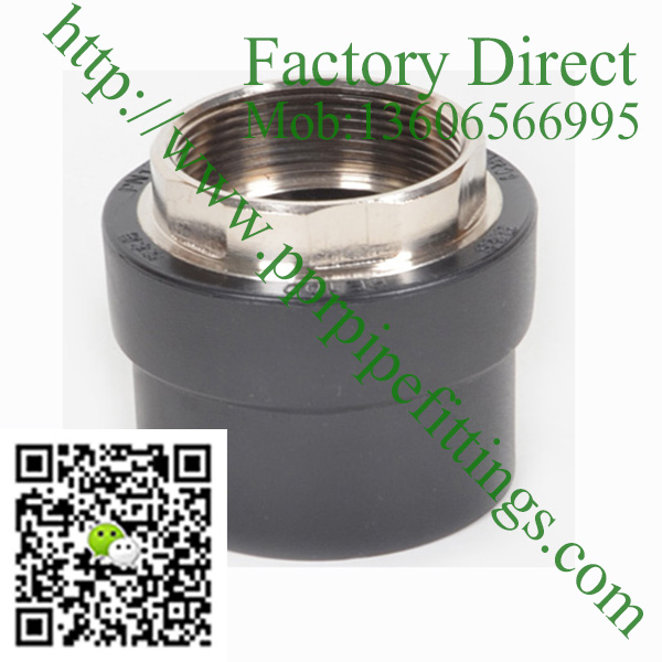 HDPE female brass socket